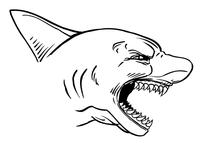 Sharks Mascot Decal / Sticker 3