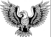 CUSTOM EAGLES MASCOT DECALS AND EAGLES MASCOT STICKERS