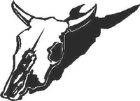 Bull Skull Decal / Sticker