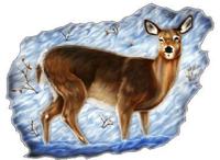 Deer Decal / Sticker 01