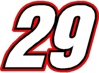 29 Race Number Switzerland Inserant Font Decal / Sticker