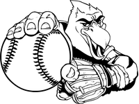 Baseball Hawks / Falcons Mascot Decal / Sticker