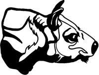 Bulls Mascot Decal / Sticker