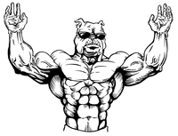 Weightlifting Bulldog Mascot Decal / Sticker 1