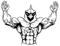 Weightlifting Cardinals Mascot Decal / Sticker 1