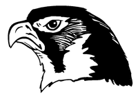 Hawks / Falcons Mascot Decal / Sticker 2
