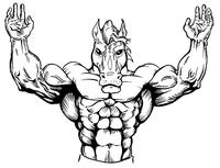 Weightlifting Horse Mascot Decal / Sticker 1
