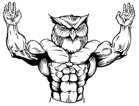 Weightlifting Owls Mascot Decal / Sticker 1