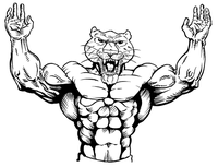 Weightlifting Cougars / Panthers Mascot Decal / Sticker 1