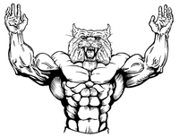 Weightlifting Wildcats Mascot Decal / Sticker 1