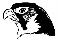 CUSTOM HAWKS MASCOT DECALS AND HAWKS MASCOT STICKERS