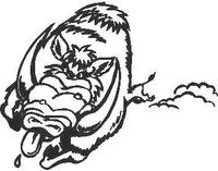 Hog / Razorback Decal / Sticker