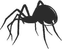 Black Widow Spider Decal / Sticker 04