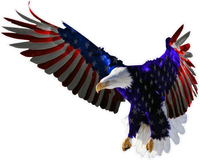 American Flag Attack Eagle Decal / Sticker 14