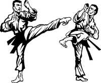 Karate Decal / Sticker