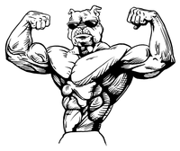 Weightlifting Bulldog Mascot Decal / Sticker 3