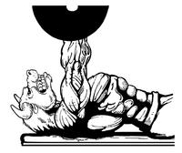 Weightlifting Bull Mascot Decal / Sticker 5