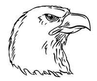 Eagles Mascot Decal / Sticker 6