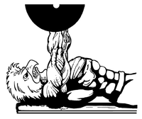 Weightlifting Gamecocks Mascot Decal / Sticker 6