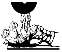 Weightlifting Horse Mascot Decal / Sticker 3