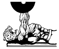 Weightlifting Leopards Mascot Decal / Sticker 3