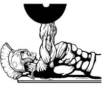 Weightlifting Paladins / Warriors Mascot Decal / Sticker 3