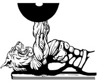 Weightlifting Wildcats Mascot Decal / Sticker 3
