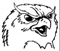 CUSTOM OWL MASCOT DECALS AND OWL MASCOT STICKERS