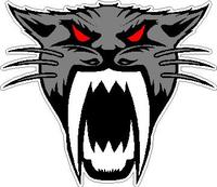 Arctic Cat Head decal / sticker