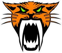 Orange Arctic Cat Head Secal / Sticker 12