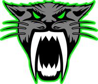 Arctic Cat Head Decal / Sticker 13 Green