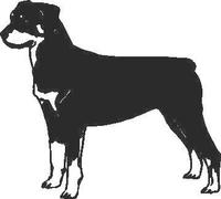 Rottweiler Decal / Sticker 01