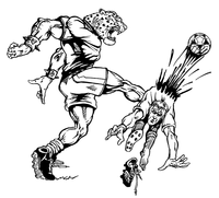 Soccer Leopards Mascot Decal / Sticker 1