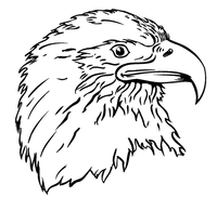 Eagles Mascot Decal / Sticker 7