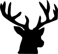 Buck Deer Decal / Sticker 12