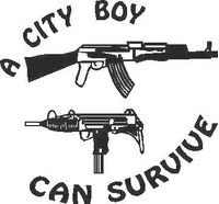 City Boys can Survive Decal / Sticker