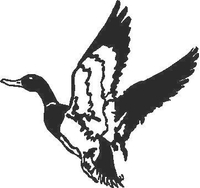 Duck Decal / Sticker