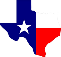 Texas State with Flag Decal / Sticker 08