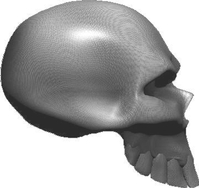 3D Carbon Fiber Skull 05 Decal / Sticker