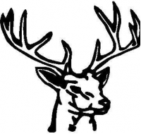 BUY CUSTOM BUCK DECALS and BUCK STICKERS