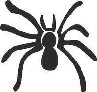 Spider Decal / Sticker 01