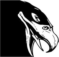 Hawks / Falcons Head Mascot Decal / Sticker