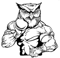 Track and Field Owls Mascot Decal / Sticker 3