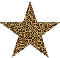 Leopard Print Star Decal / Sticker