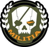CUSTOM MILITIA DECALS and STICKERS