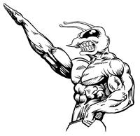 Weight Lifting Hornet, Yellow Jacket, Bee Mascot Decal / Sticker 02