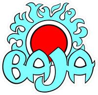 Baja Decal / Sticker 17fc