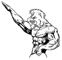 Weightlifting Gamecocks Mascot Decal / Sticker 2