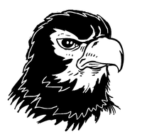 Hawks / Falcons Mascot Decal / Sticker 4