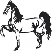 CUSTOM HORSE DECALS and HORSE STICKERS